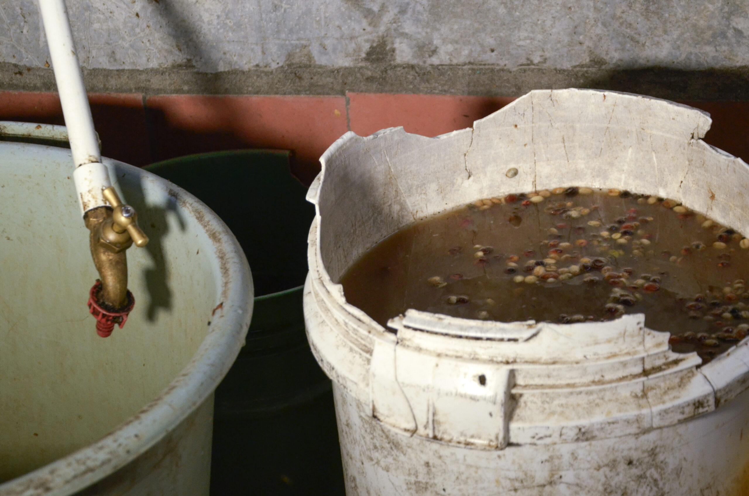 ¿Cómo tratar y usar el agua en territorios rurales para prevenir la propagación de la COVID-19?
